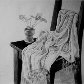 "Spring at Home, 18"" x 23"",Pencil on paper / 春天在家, 46x 58cm, 素描, 2010"