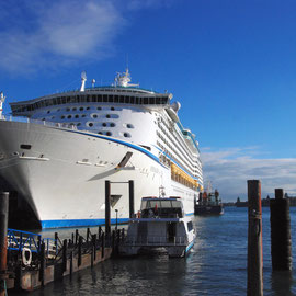 Cruise ship, Auckland Harbour