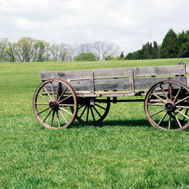 Mount Vernon wagon