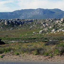 Hills behind Olifantbos Bay