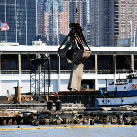 Sea Lion and pier demolition mid West side