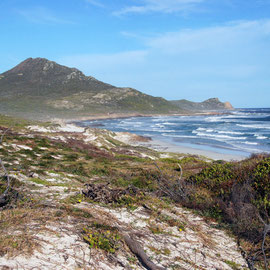 Looking south across Maclear Beach to the Cape of Good Hope