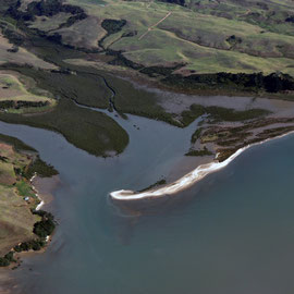 Manukau Harbour south side spit