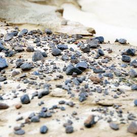 Wind-scoured rock, Sandfly Beach, Otago Peninsula