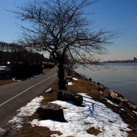 Hudson Walkway from Harlem