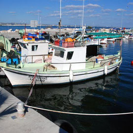 Larnaka Fishing Boats