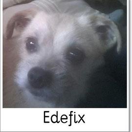 Edefix