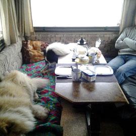 Wie Frühstück? Wir sind noch müde!