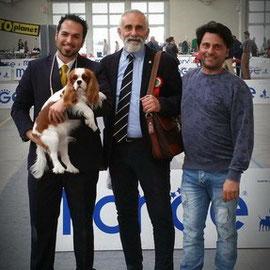 NDS Asti 3-5-2015 *DANTE DEI PICCOLI DEMONI 1 EXC,CAC,BOB *ANGEL DEI PICCOLI DEMONI 1 EXC, CAC,BOS  Handler: Saliceti & Mapelli Team Owner: Carsana e Piccoli Demoni kennel -- IDS ALESSANDRIA  1 Maggio *DANTE DEI PICCOLI DEMONI* 1' EXC,CAC,CACIB,BEST OF BR