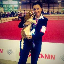 World Dog Show Milano 2015*Pavarotti dei Piccoli Demoni*1'miglior maschio bos minor puppy ClassP.Handler : Vale Cucchi Owner: Vale Cucchi Breeder: Delfine Roberto / Piccoli Demoni Kennel