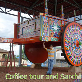 Sarchi and coffee