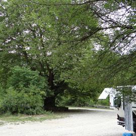 Enfin nous trouvons le bivouac à Aristi très joli village