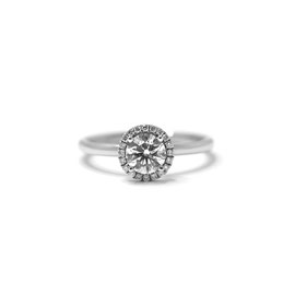Solitaire halo | Or blanc 14k