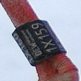 Hier eine Vergrößerung des Rings 1X160-1X159