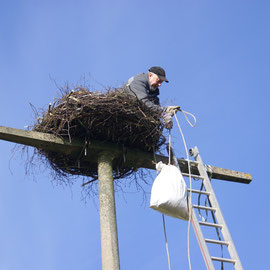 auspolstern der Neuen Nest konstuktion aus Metal