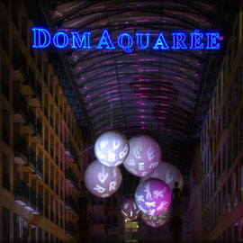 Dom Aquaree
