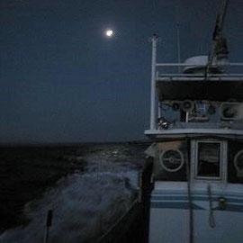 月明かりに後押しされて