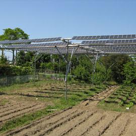 13:30撮影 太陽光発電設備の下にすじ状の影