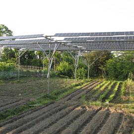 17:30撮影 太陽光発電設備の影は完全に右(東)側に移動、畑にかかっている影は隣家のもの