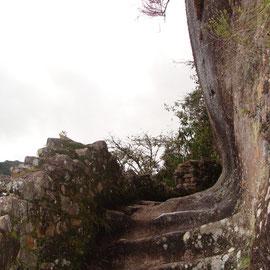El Camino Inca. Un arte.