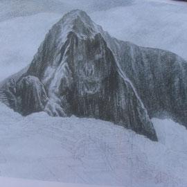 El condor (izq.) y el puma (en medio).