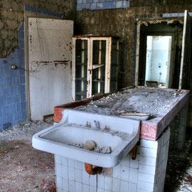 Pathology Exclusion Zone Chernobyl