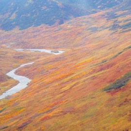 Karluk River