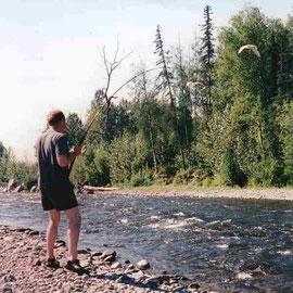 Pink-Fischen im Montana Creek