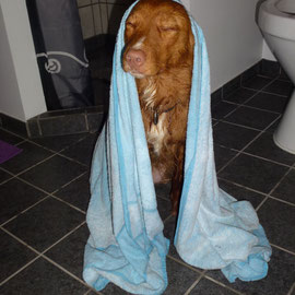 Nita nach einer kleinen Dusche