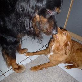 Nita mag Rudi und Rudi mag Nita