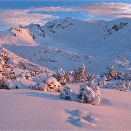 Alpen (les Alpes - sud de l'Allemagne, Autriche, Suisse)