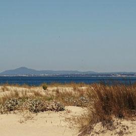 der Stadtstrand von Vila  Real ... einer der wenigen etwas ruhigeren und nicht so bevölkerten Strände der Ostalgarve ... am Horizont ist der Serro de Sao Miguel bei Moncarapacho und Faro zu erkennen, immerhin liegt er ca. 40km entfernt und ist 411m hoch