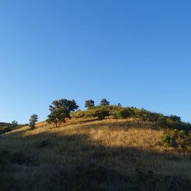 ein Hügel erwacht