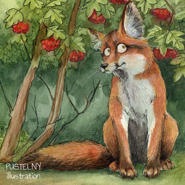 Illustration Fuchs Lebensraum