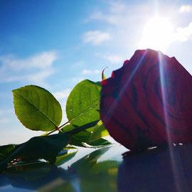"""Foto: pixabay.com - vielen Dank an """"Alla Korbut"""" :)"""