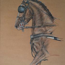 Wvz 2006 | P | 194 | Kutschpferd