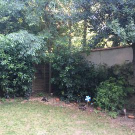 Utilisation des oyas pour irriguer les jardin
