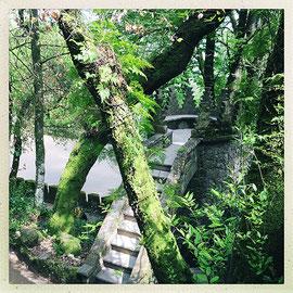 Quinta da Regaleira - Tour de guet © Sandrine Tellier