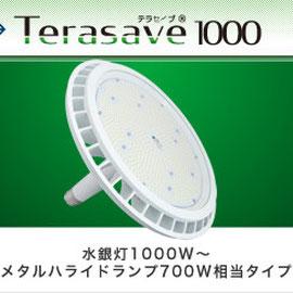Terasave 1000 テラセーブ 1000