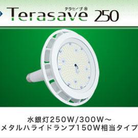 Terasave 250 テラセーブ 250
