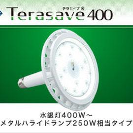 Terasave 400 テラセーブ 400