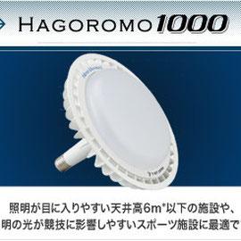 HAGOROMO 1000