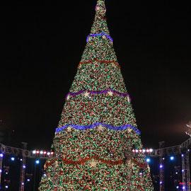 El acto de apertura del Festival Árbol Gallo 2011 será el sábado 12 de noviembre, con un espectáculo impactante a partir de las 19:00 horas, el árbol más grande ubicado en el Obelisco y, simultáneamente, en 27 localidad en diferentes puntos del país.