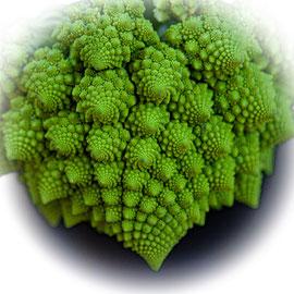 L_No.06_Romanesco Broccoli