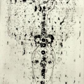 o.T. - Radierung - 30 x 24 cm - Aufl. 35 - 1966