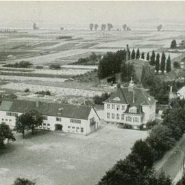 Blick vom Kirchturm über die Schule bis zum Rheindamm