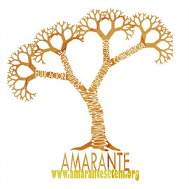 www.amarantesetem.org