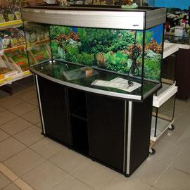 Aquarien Ausstellung 4 Zoo Kellner