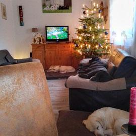 Marie - ganz hinten -, Elspeth und Albus auf der Couch und Aili vorne auf dem Kissen