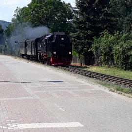 Schmalspurbahn, Harz, Sachsen-Anhalt